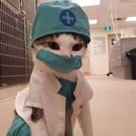 doctorxcat