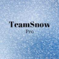 TeamSnow Pro