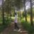 pc_meraklısı