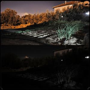 Galaxy S10 - Gece Modu
